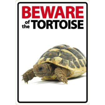 'Beware of the Tortoise' Sign
