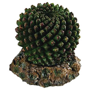RepStyle Cactus with Rock Base, 7.5 x 7.5 x 7cm (Artificial)