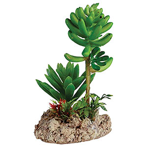 RepStyle Desert Plant Duo with Rock base (Artificial)