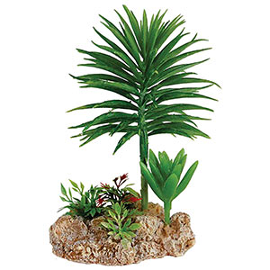RepStyle Desert Plant with Rock base (Artificial) - Out Of Stock