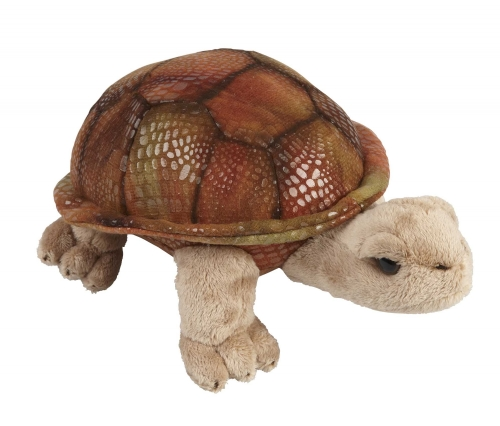 Ravensden Suma Collection Giant Tortoise Soft Toy, 18cm
