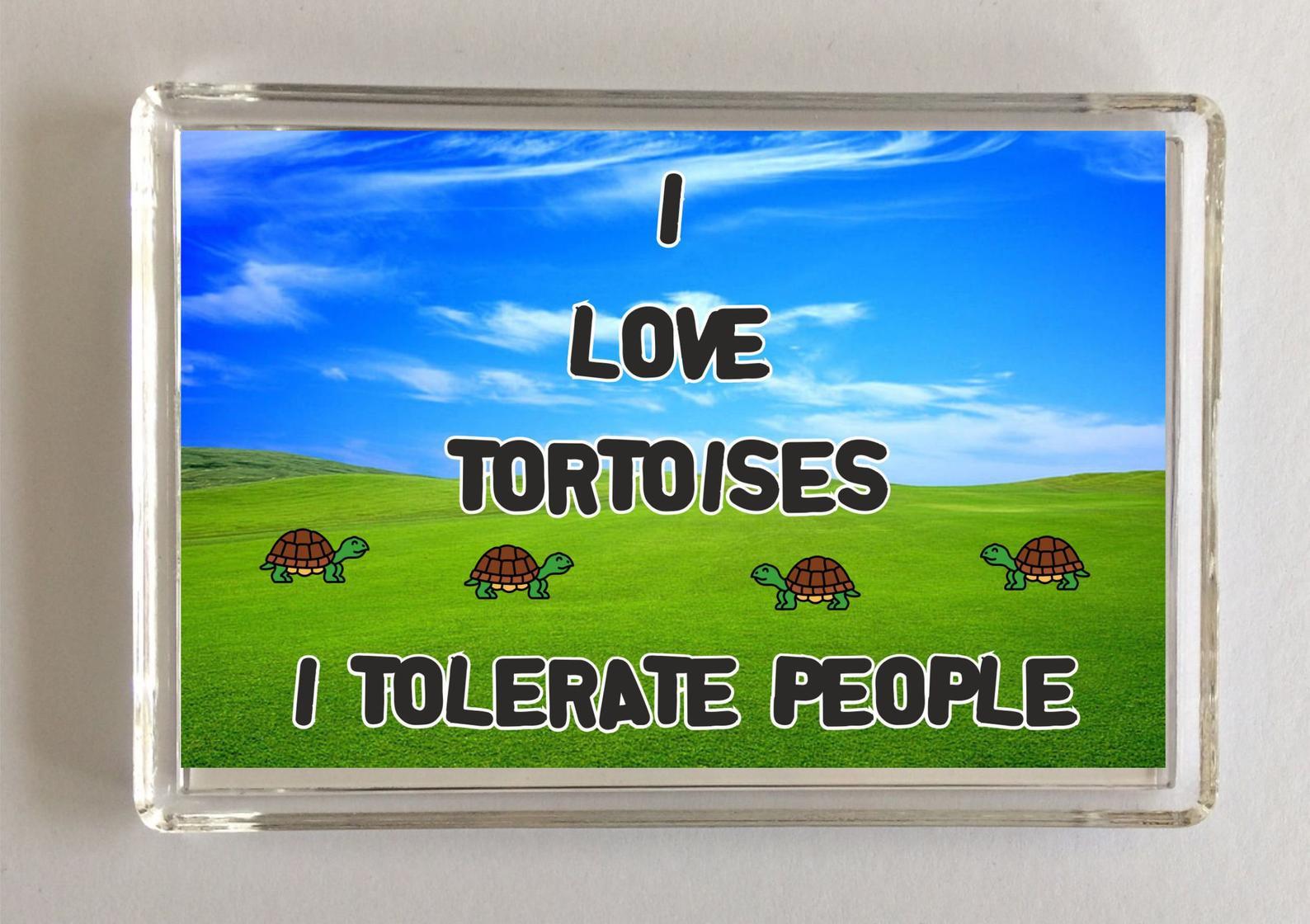 Tortoise slogan novelty magnet -