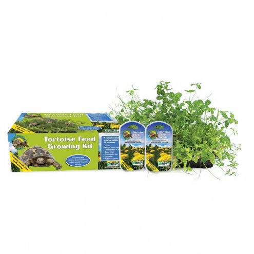 ProRep Tortoise Feed Grow Kit with 4 Sowings