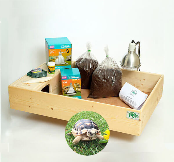 Marginated Tortoise including a Large Complete Package - Out of Stock