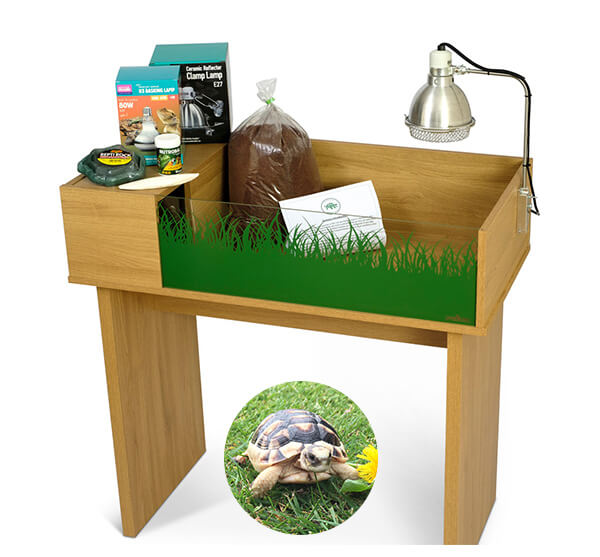 Marginated Tortoise including a Viv Exotic Viva Tortoise Table and Stand Complete Package - Out of Stock