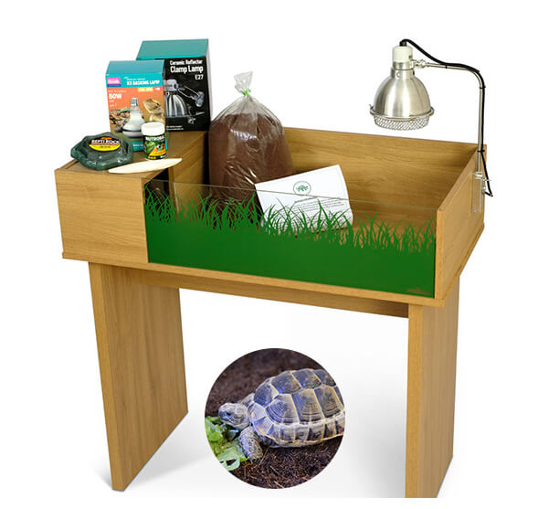 Mediterranean Spur-thighed Tortoise including a Viv Exotic Viva Starter Tortoise Table and Stand Complete Package