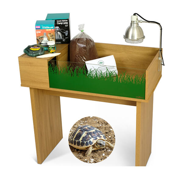 Western 'Dwarf' Hermanns Tortoise including a Viv Exotic Viva Tortoise Table and Stand Complete Package - Out of Stock
