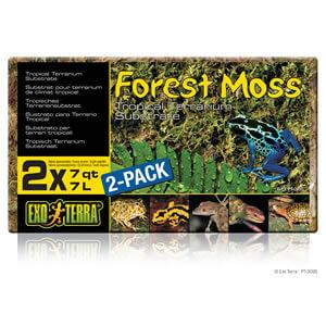 Exo Terra Forest Moss, 2 x 7 Litre Block