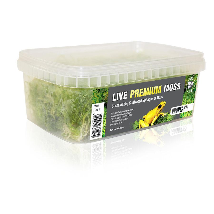 Pro Rep Live Plant, Sphagnum Moss, 1 litre tub